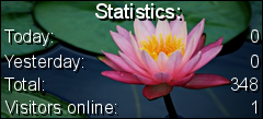 Stats4U - Counters, live web stats and more!
